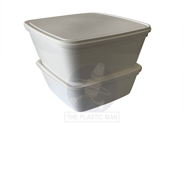 Ice Cream Container 2L - Ic2 Storage Boxes & Crates
