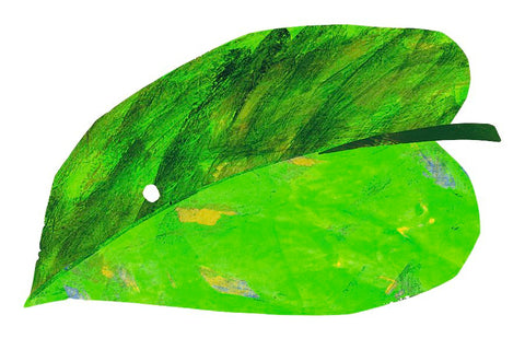 A small egg lay on a leaf Very Hungry Caterpillar