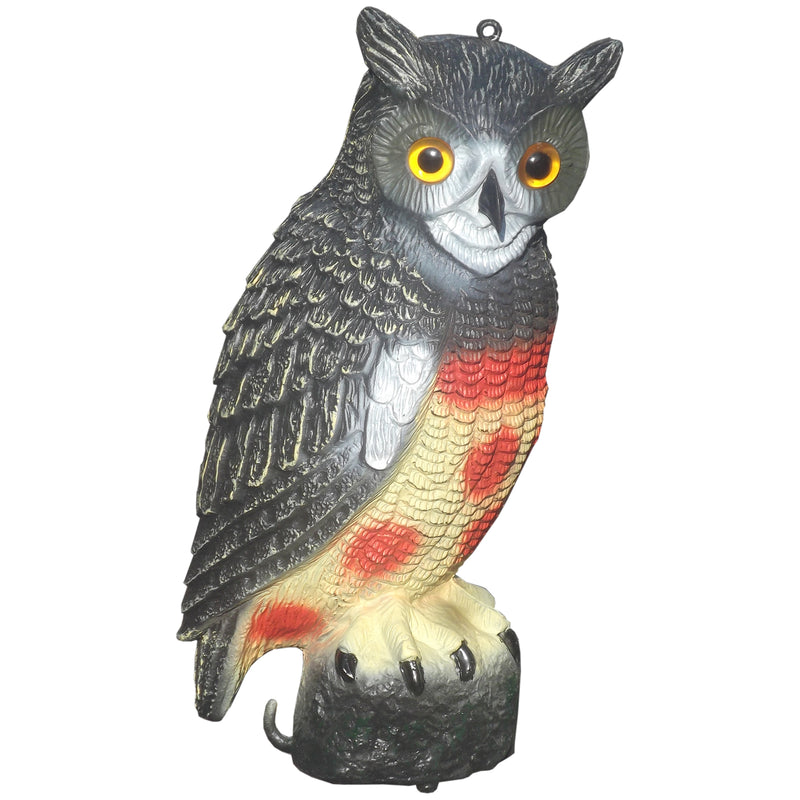 Decoy Owl with Fixed Head