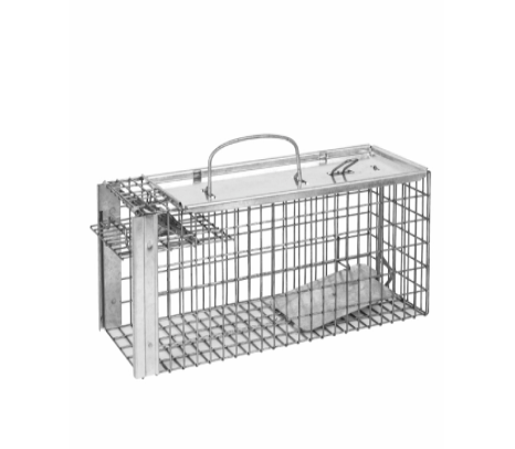 Rat and Squirrel Cage Trap