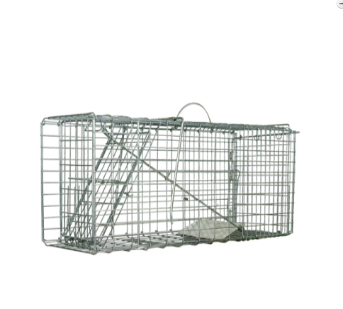 Animal Trap Large