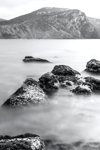 Black & White Canvas - Water Set #2