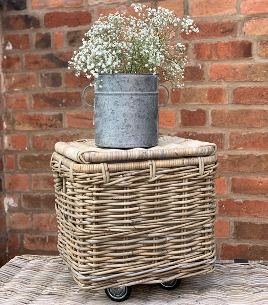 Wicker Trunk On Wheels With Liner
