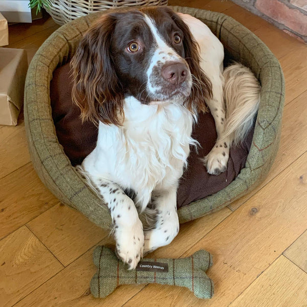 Tweed Oval Dog Bed