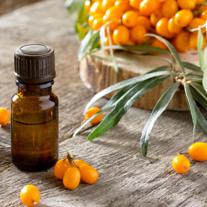 Sea Buckthorn, the Wonder Herb!