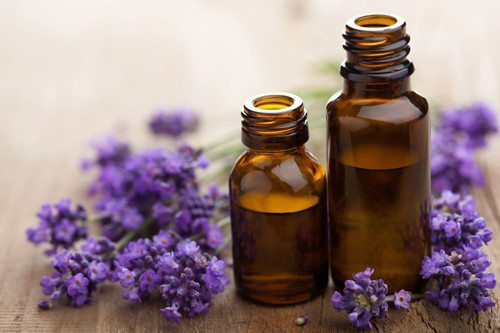 lavender essential oil which can relieve migraine pain