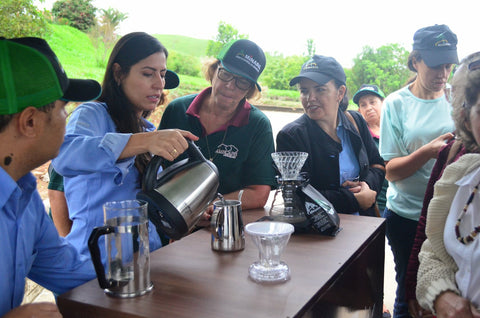 Brazil female coffee farmers