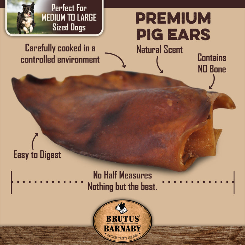 Large, Whole and Natural- Pig Ears for Dogs