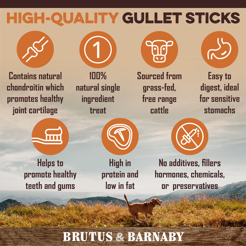 Beef Jerky Gullet Sticks for Dogs