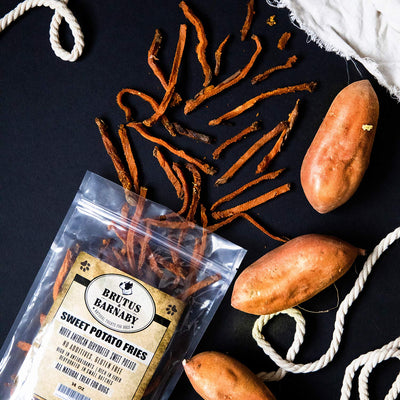Sweet Potato Dog Treats- No Additives Dehydrated Sweet Potato Fries, Grain Free, Gluten Free and No Preservatives Added (14 oz)