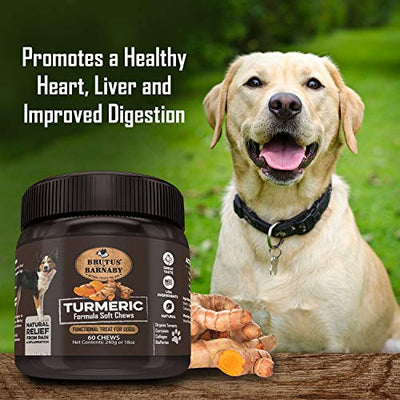 Turmeric Soft Chews For Dogs - Organic Turmeric With Curcumin - Functional Treats for Dogs