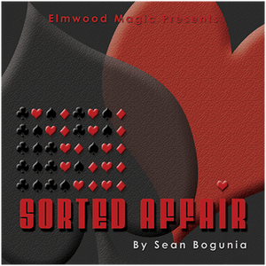 Sorted Affair (2013) by Sean Bogunia