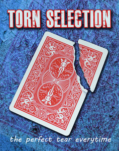 Torn Selection, Steel - Bicycle