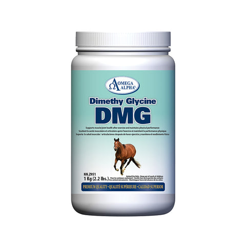 Omega Alpha Equine -- Dimethyl Glycine (DMG) Performance  And Recovery Product