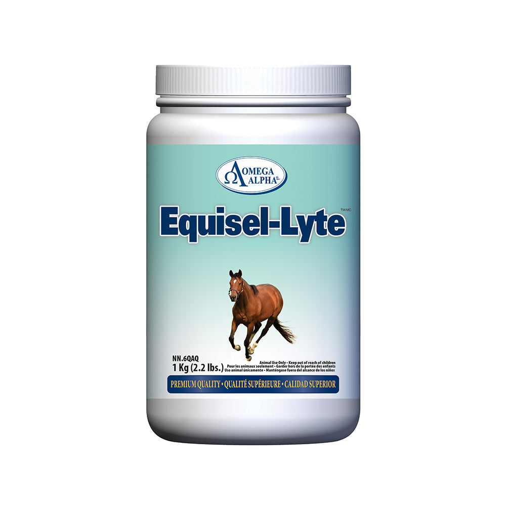 Equisel-Lyte™ Recovery Formula with Branched Chain Amino Acids