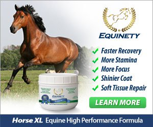 Equinety All Natural Amino Acid Horse Supplement