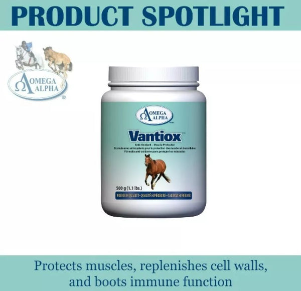 Omega Alpha Equine -- Vantiox™ Healthy Muscle Function Antioxidants Free Radicals
