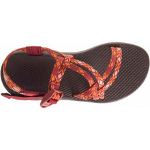 Wm's Z/CLOUD X-Chaco Australia