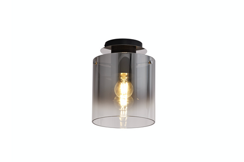 Zuma 1lt Flush Ceiling Light