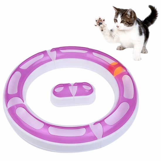 Circuit Senses Toy Cat