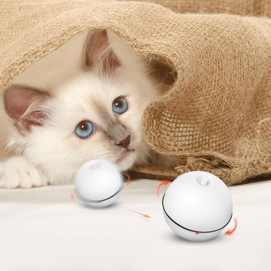 LED Laser Cat Ball