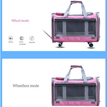 Cat Trolley Bag Rolling Carrier