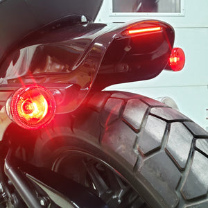 Fat bob tail light