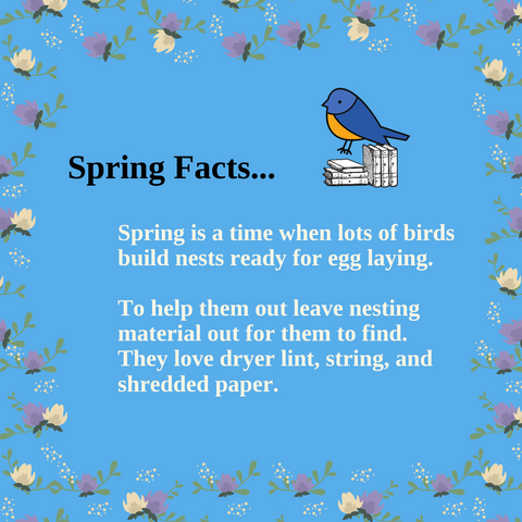 spring facts