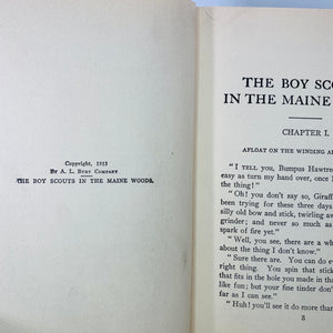 The Boy Scouts in the Maine Woods by Herbert Carter 1913-Reading Vintage