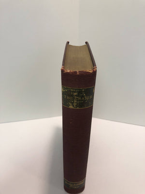 The Crater by J. Fenimore Cooper Leather-Stocking Edition Vintage Book