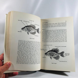 America's Favorite Fishing A Complete Guide to Angling for Panfish by F. Philip Rice Outdoor Life 1964 Vintage Book