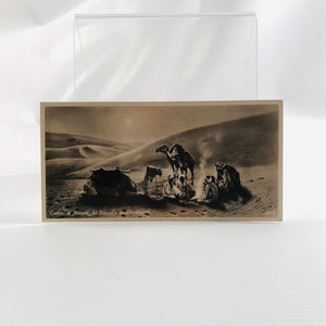 Postcard Souvenir of Egypt, Cairo, A Moonlight Scenery in the Desert 1940's Era Series H Number 419