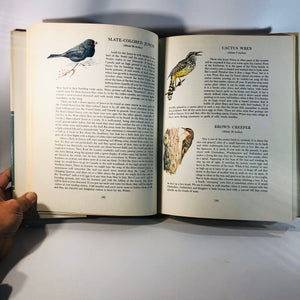 An Introduction to Nature Birds Wildflowers and Trees by John Keiran 1966