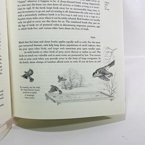 A Complete Guide to Bird Feeding by John Dennis 1975