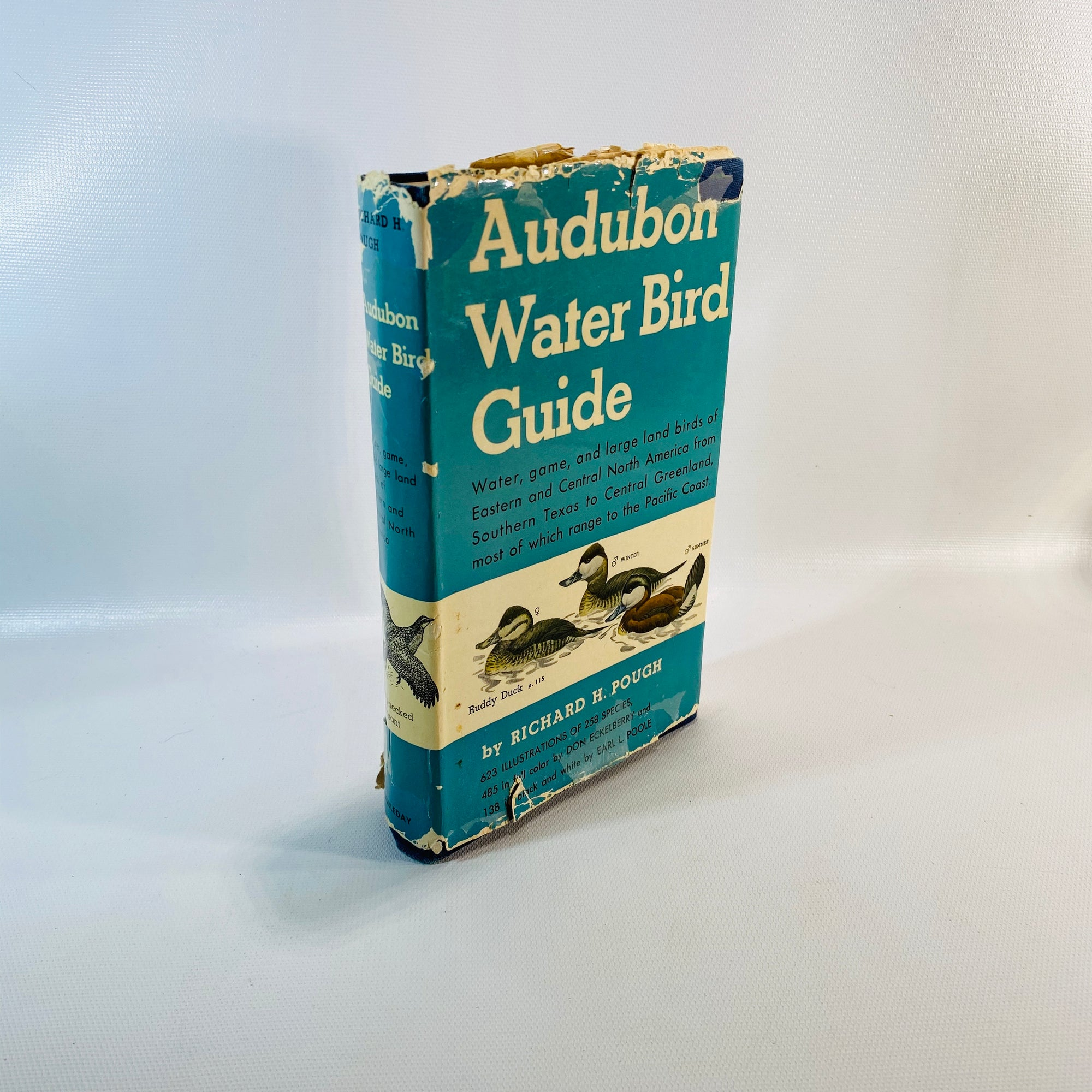 Audubon Water Bird Guide by Richard H. Pough 1951