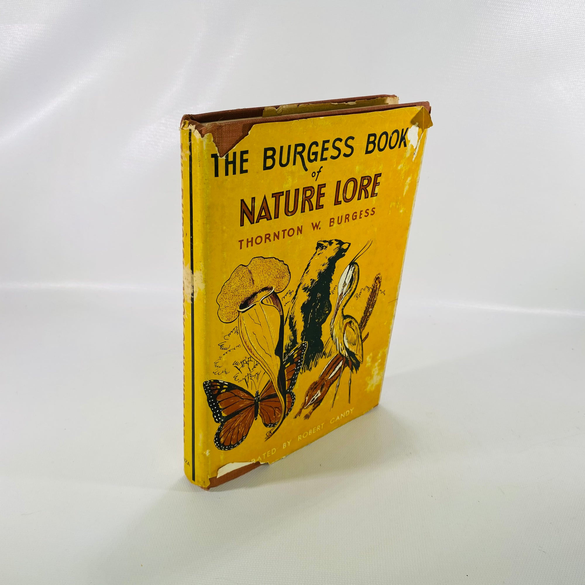 Burgess Book of Nature Lore by Thornton Burgees 1965-Reading Vintage
