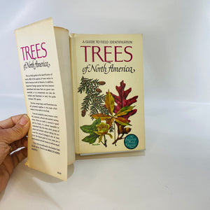 Trees of North America by C. Frank Brockman 1965-Reading Vintage