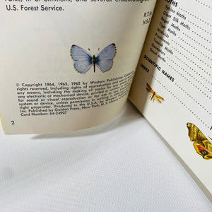 Butterflies and Moths A Golden Nature Guide by Robert Mitchell 1962