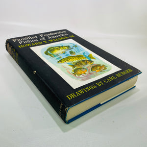 Familiar Freshwater Fishes of America by Howard T. Walden 1964 First Edition