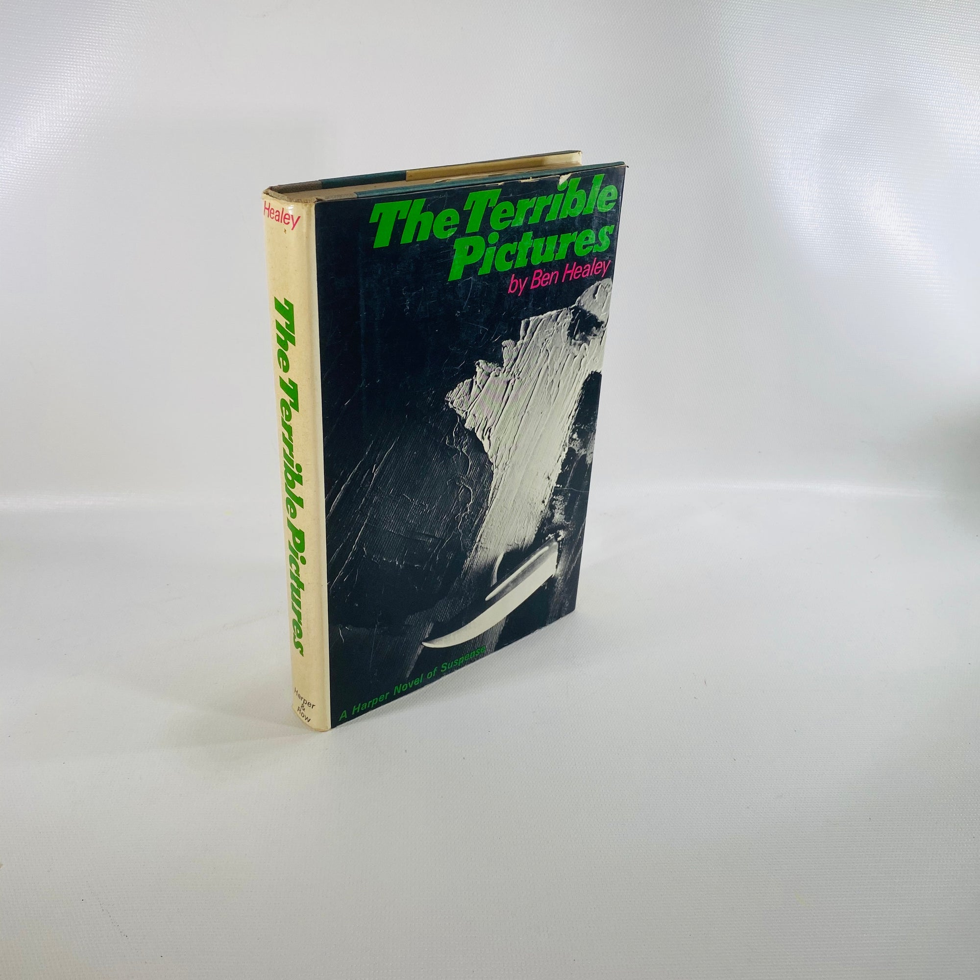 The Terrible Pictures by Ben Healey 1967-Reading Vintage