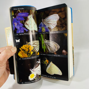 The Audubon Society Field Guide to North American Butterflies 1981 1st Edition Vinyl Cover