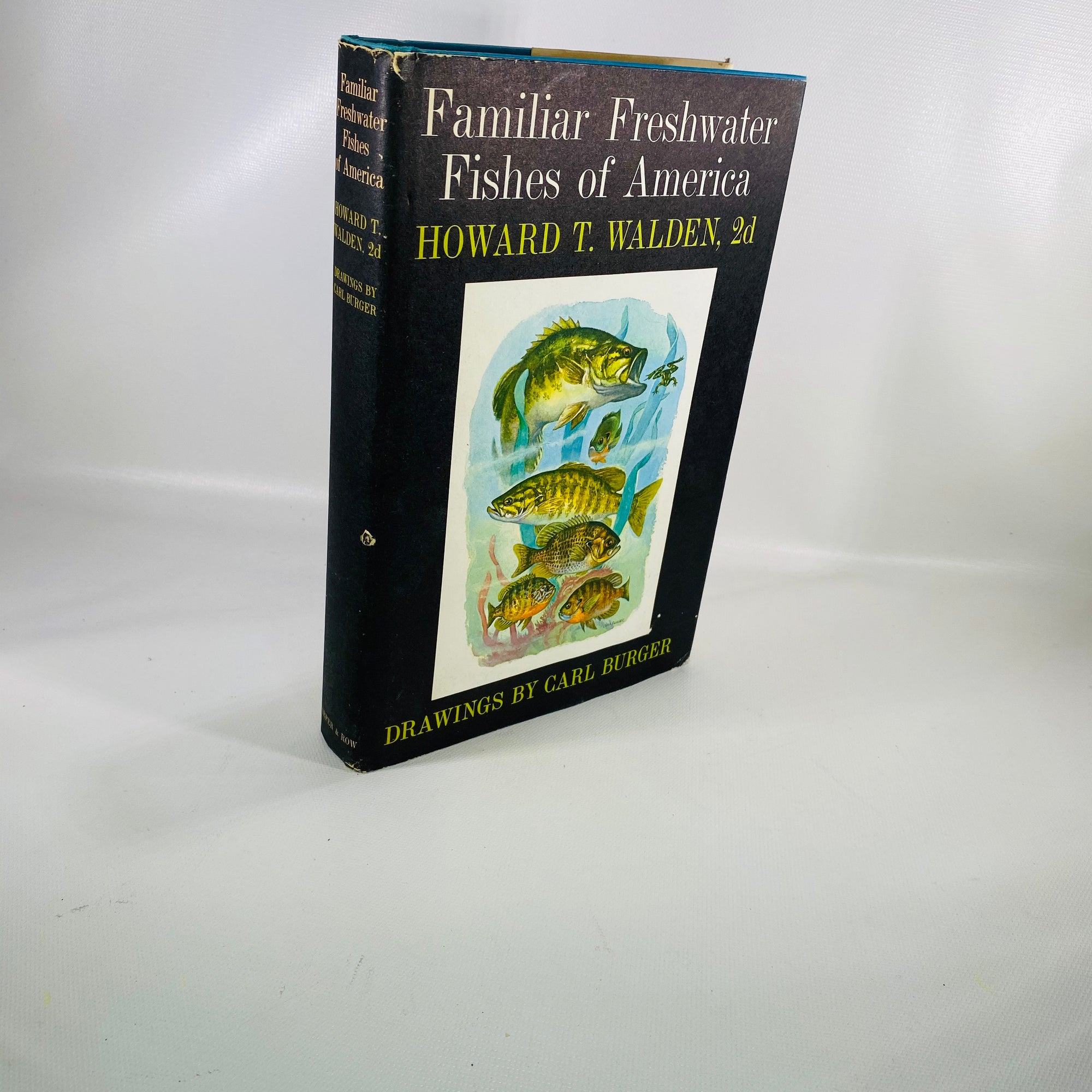 Familiar Freshwater Fishes of America by Howard Walden 1964-Reading Vintage