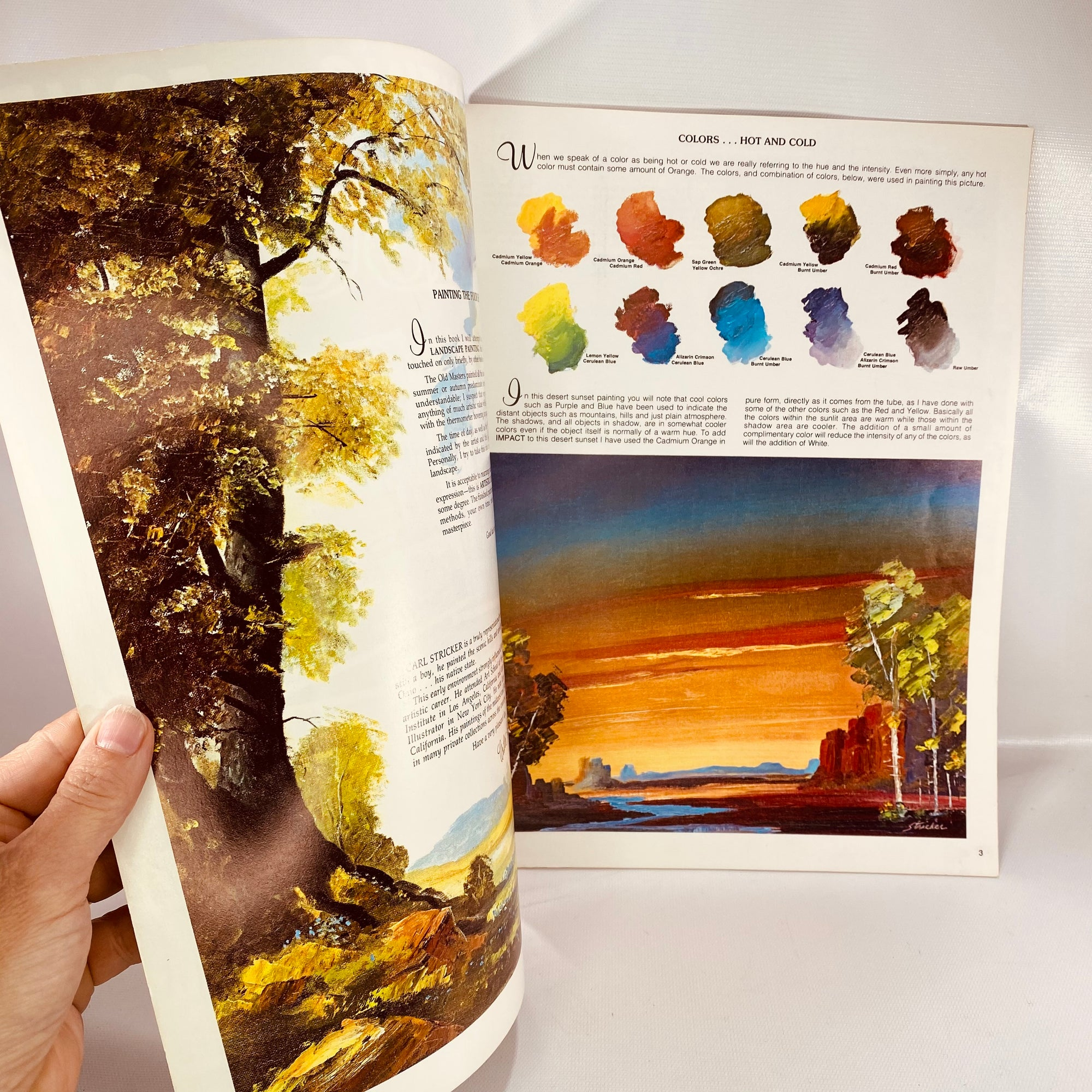 Painting the Four Seasons Number 168 by Carl Stricker-Reading Vintage