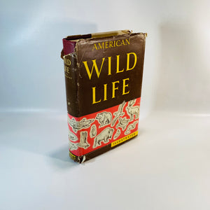 American Wild Life Illustrated Whm. H. Wise 1954-Reading Vintage