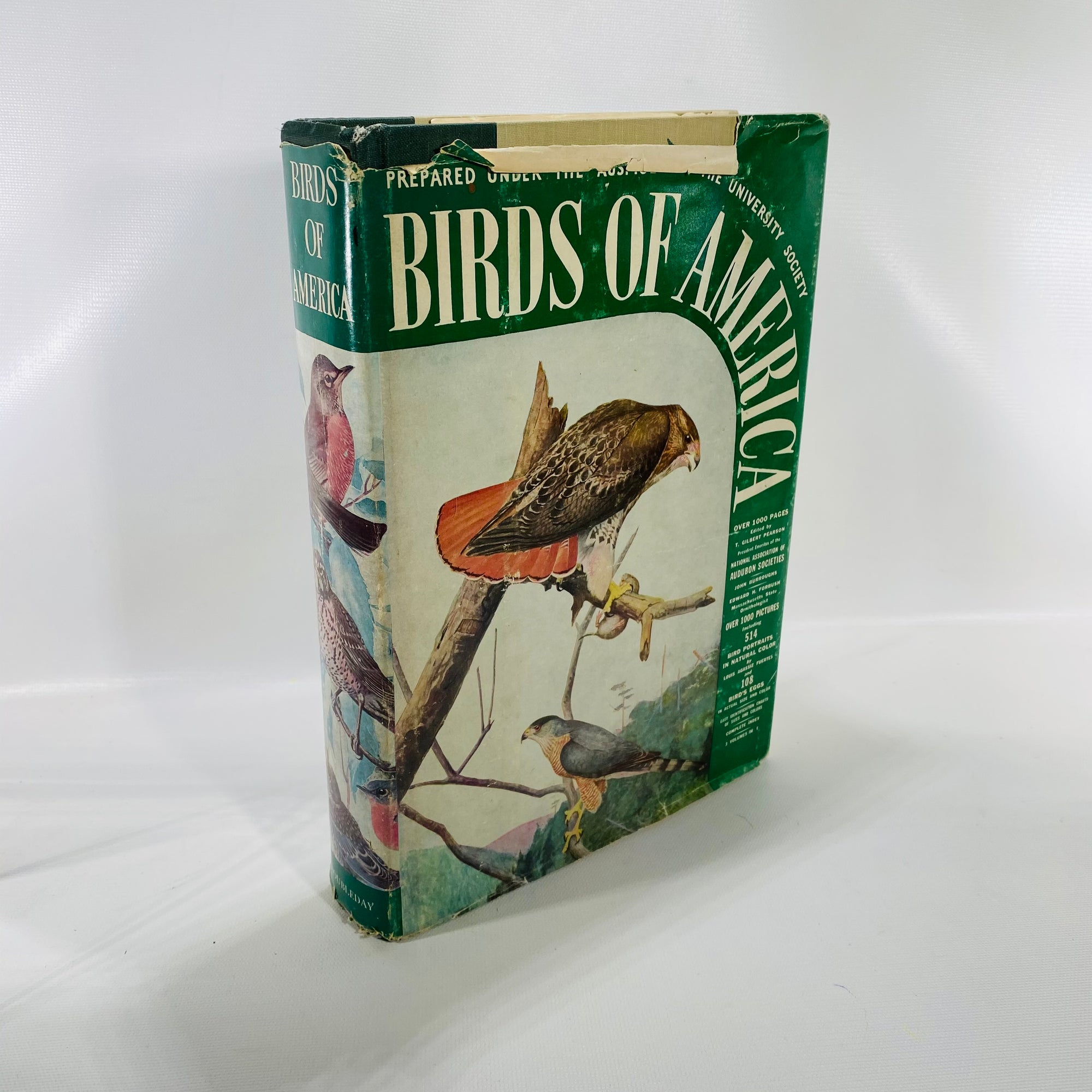 Birds of America by edited by T. Gilbert Pearson 1936-Reading Vintage