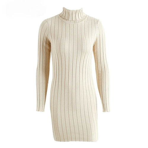 Ribbed Turtleneck Sweater Dress