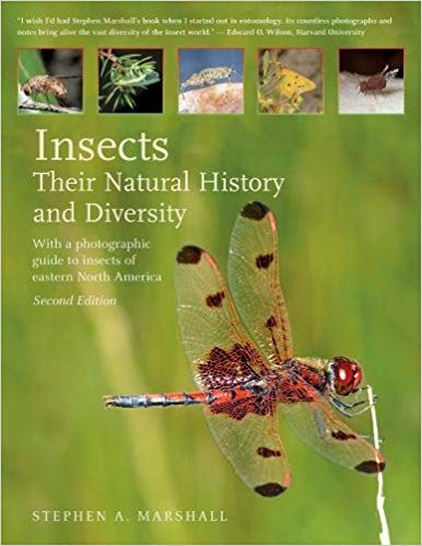 Insects:Their Natural History and Diversity: With a Photographic Guide to Insects of Eastern