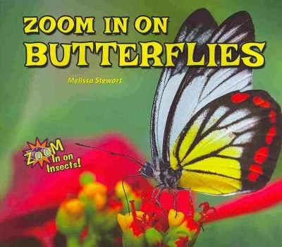 Zoom in on Butterflies (Zoom in on Insects!)