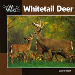 Whitetail Deer (Our Wild World)