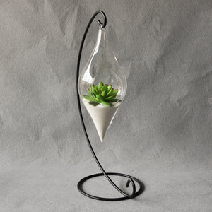 Hanging Glass Vase